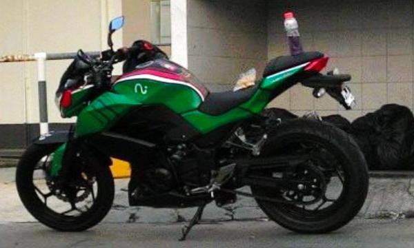Kawasaki Z250 Bate Hoppa