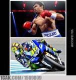 Meme MotoGP Valencia 18